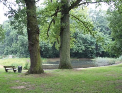 Park Daalhuizen: Historisch onderzoek en waardestelling